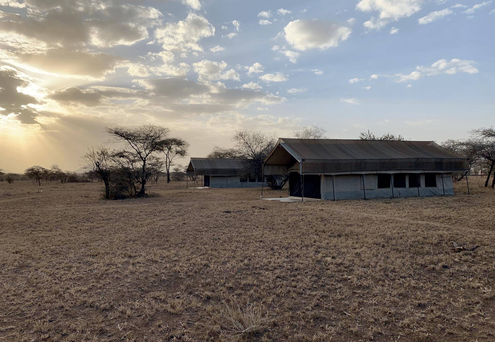 le thorn tree camp dans le parc du serengeti