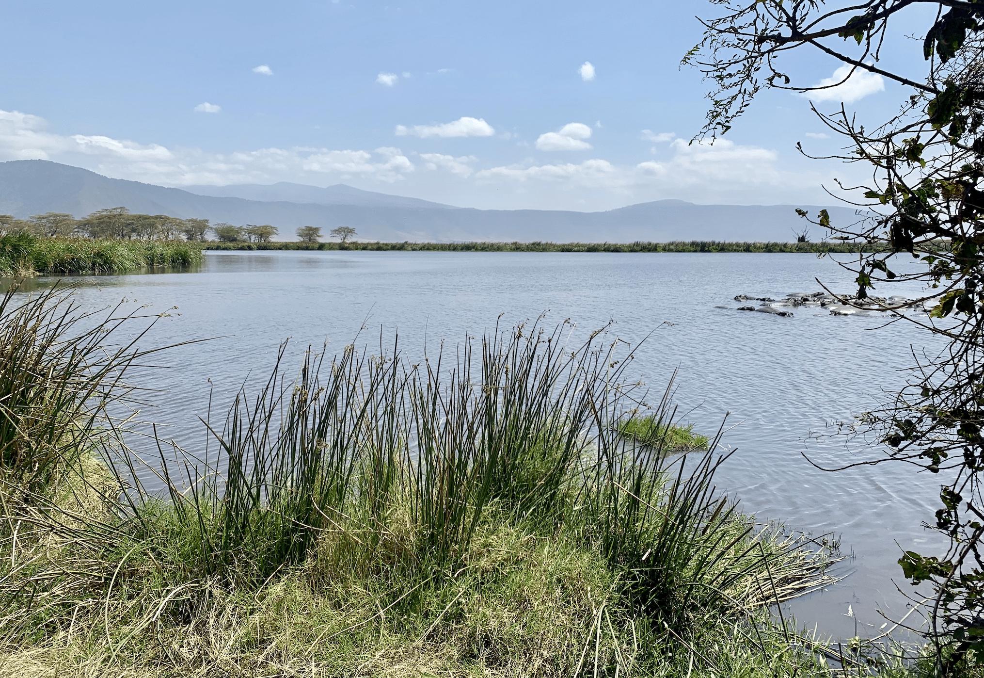 safari en tanzanie : les paysages dans le cratere du ngorongoro