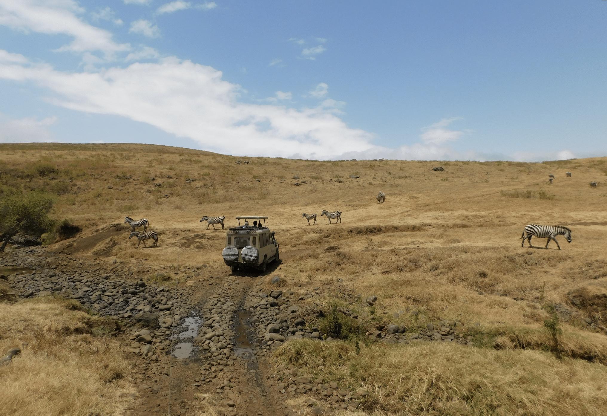 paysages du cratere du ngorongoro