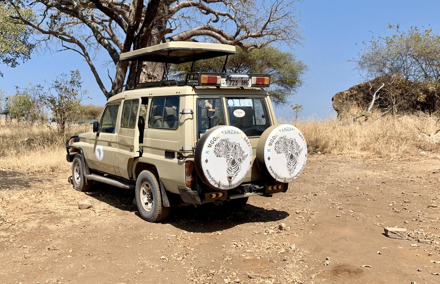 reserver son safari en tanzanie avec l'agence kimgoni tanzania safaris