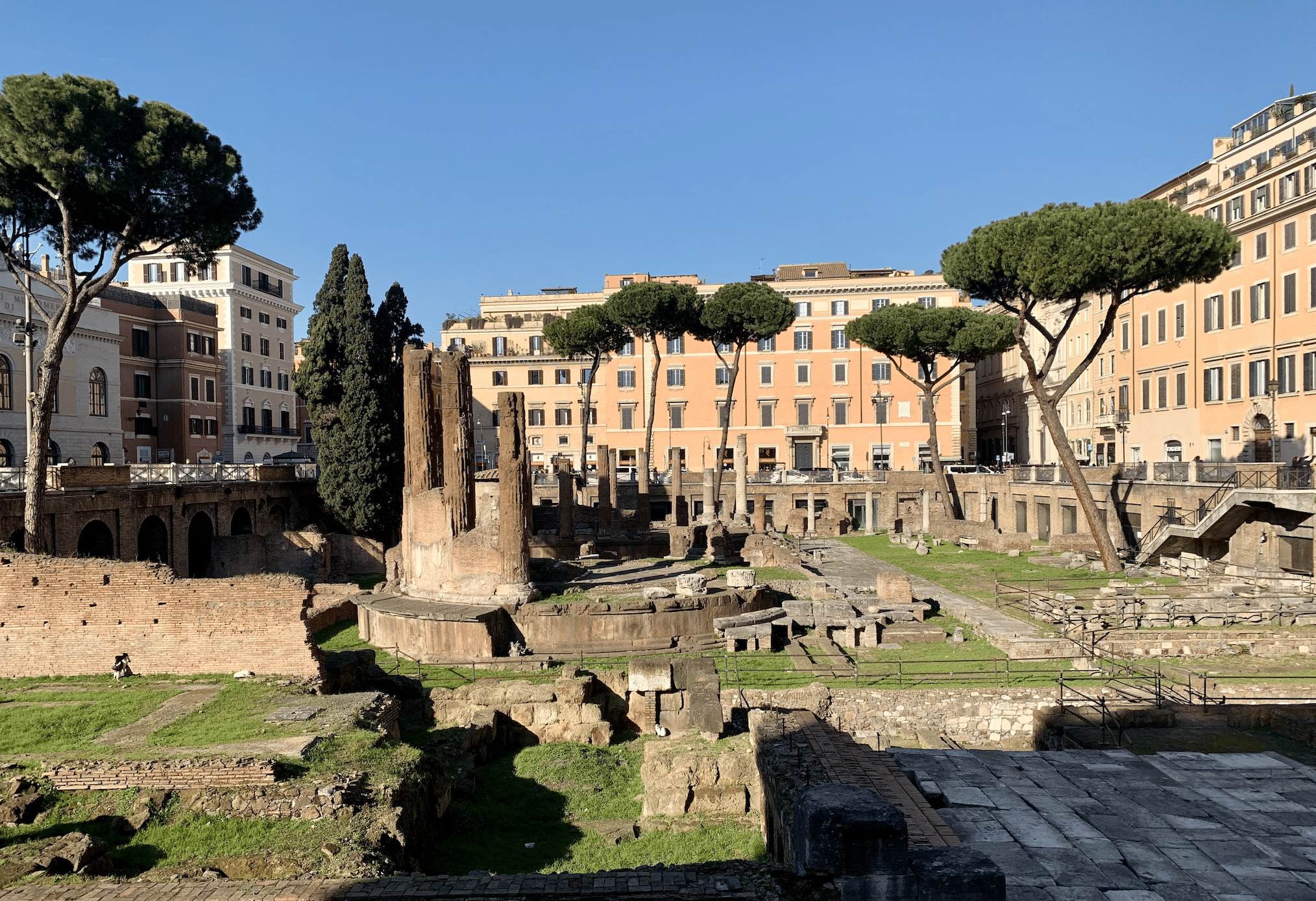 visiter rome : le largo di torre argentina