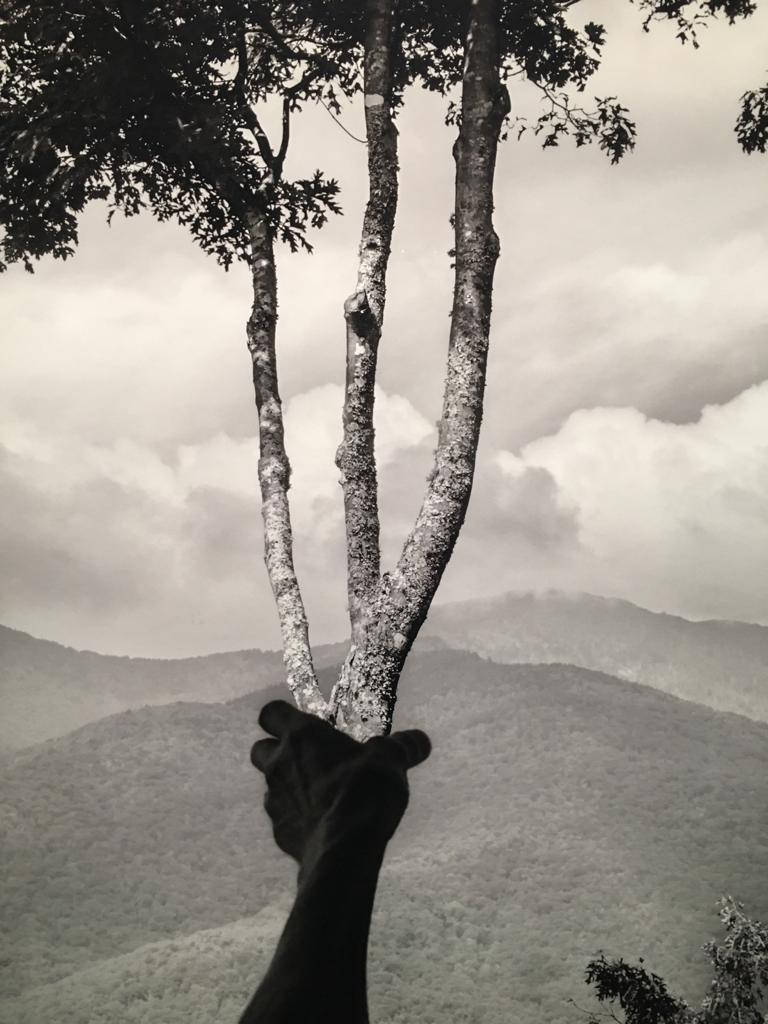exposition deux cents saisons au musee fotografiska