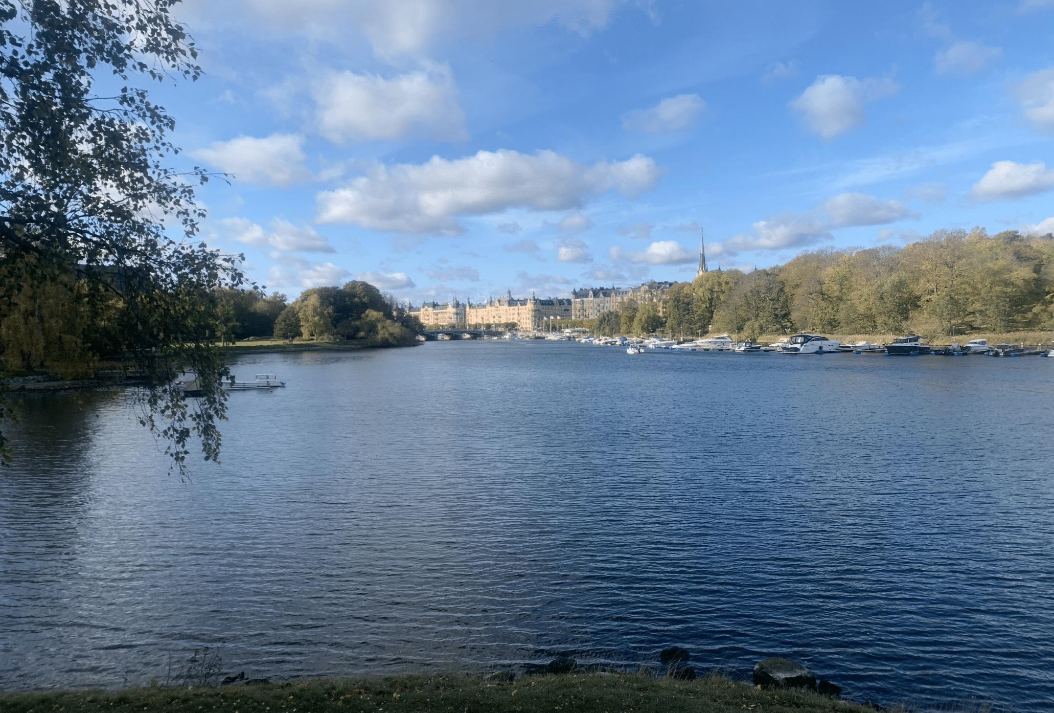 que faire a stockholm : visiter l'ile de djurgarden