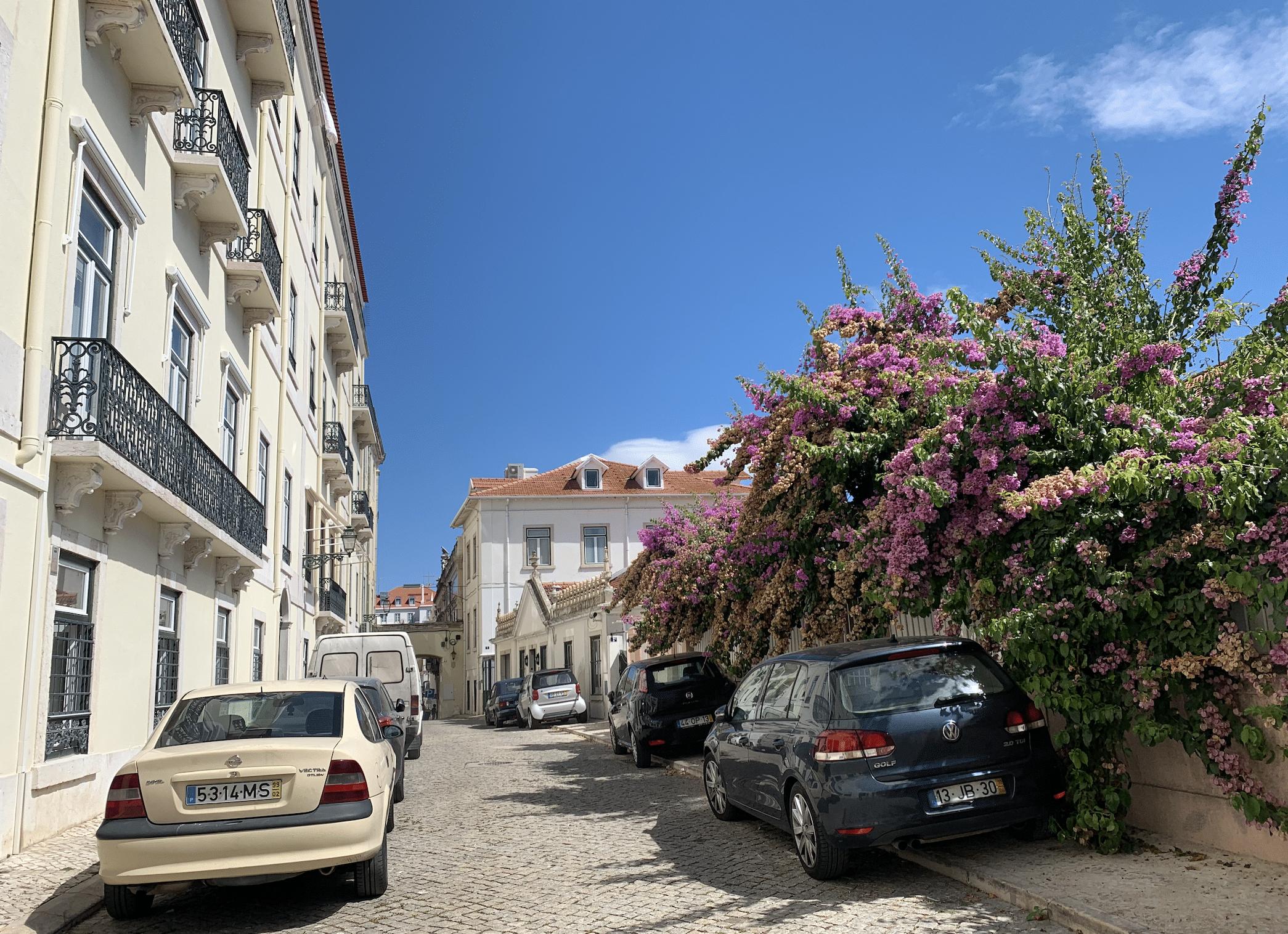 ruelle dans le quartier de bairro alto