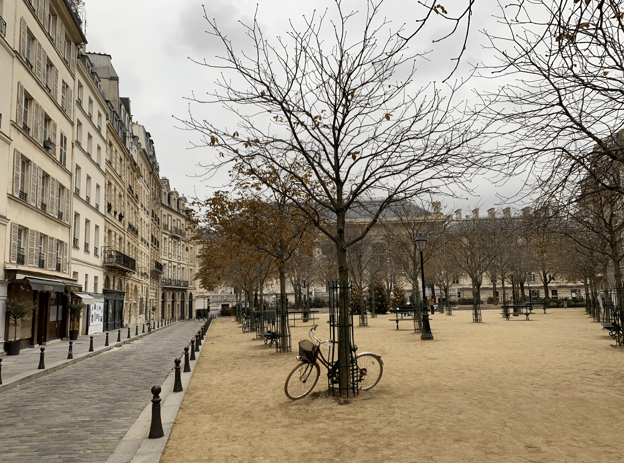 promenade sur l'île de la Cité : place dauphine